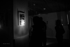 COPYRIGHT-WILLIAM-EJAM-MAAIL-2017-http-therealejammaail.tumblr.com-70