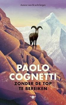 Zonder de top te bereiken Book Cover