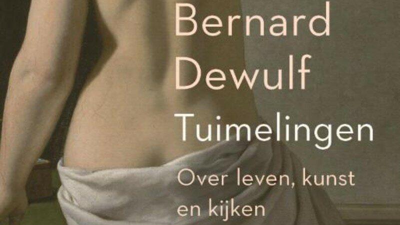 Beter leren kijken met Bernard Dewulf