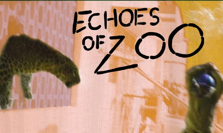 Echoes of Zoo, Breakout