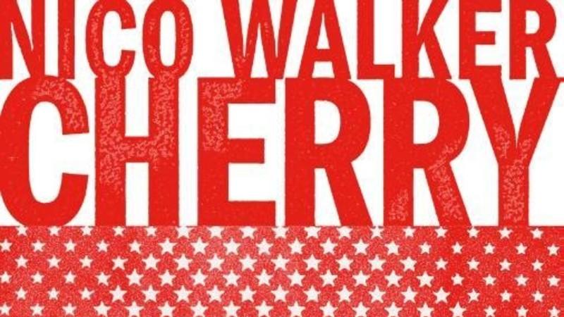 Nico Walkers hellevaart van een heroïsche heroïnehufter