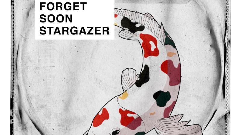 Ondergedompeld worden in de diverse wereld van indiepop met Forget Soon Stargazer
